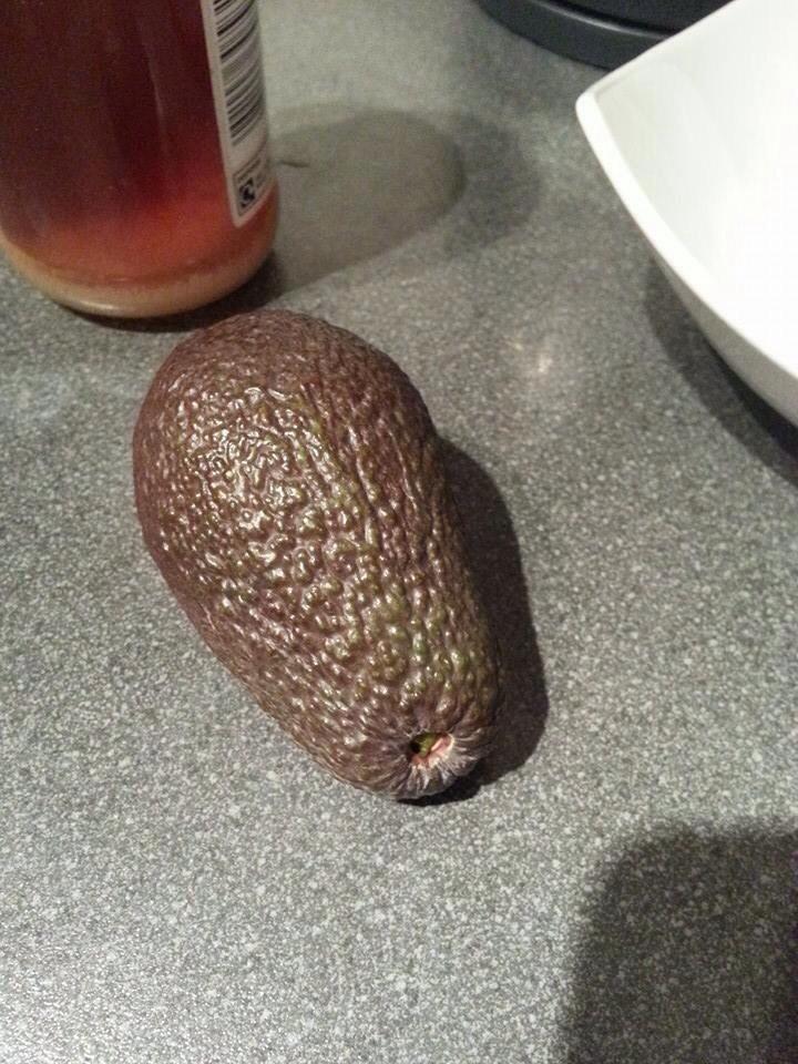 Avocado Baby (3/6)