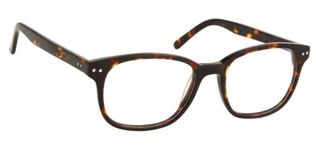 Fearne%20Oversize%20Ladies%20Glasses%20Frame